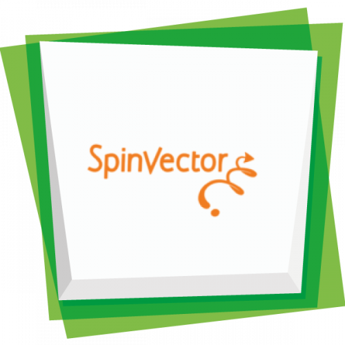 Spinvector