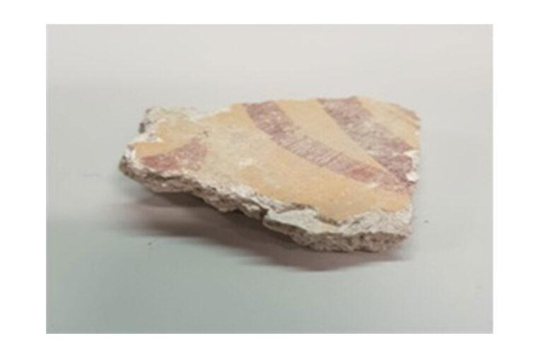 Caratterizzazione mediante microspettroscopia Raman dei pigmenti usati per gli strati pittorici del Parco Archeologico Urbano di Napoli (PAUN)
